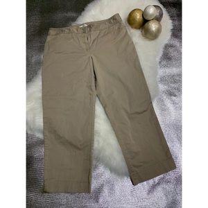 Ann Taylor LOFT petites short Pant size 12p